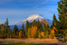 snow capped mountain peak behind autumn trees