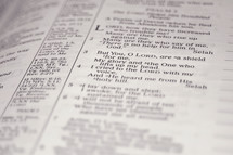 """Scripture up close, Black & White. """"But you o Lord are a shield about me, My glory and the One who lifts up my head."""""""