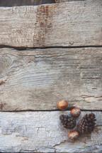 pine cones and acorns on wood