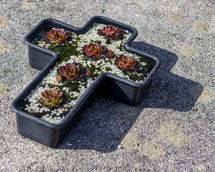 A cross shaped planter sits on the ground and contains succulent plants and white rocks