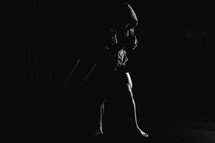 boxer standing in shadows