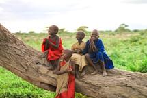 village children climbing a tree