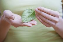 woman holding a green leaf