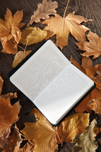notebook and fall leaves
