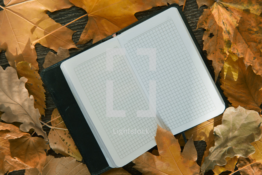 open notebook in fall leaves