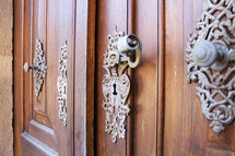 ornate door knob on a wood door