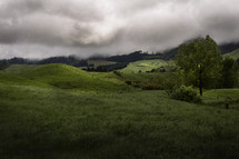 green country hills