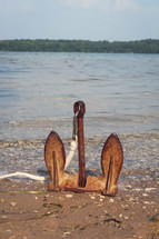rusty anchor sitting upright on a lake shore