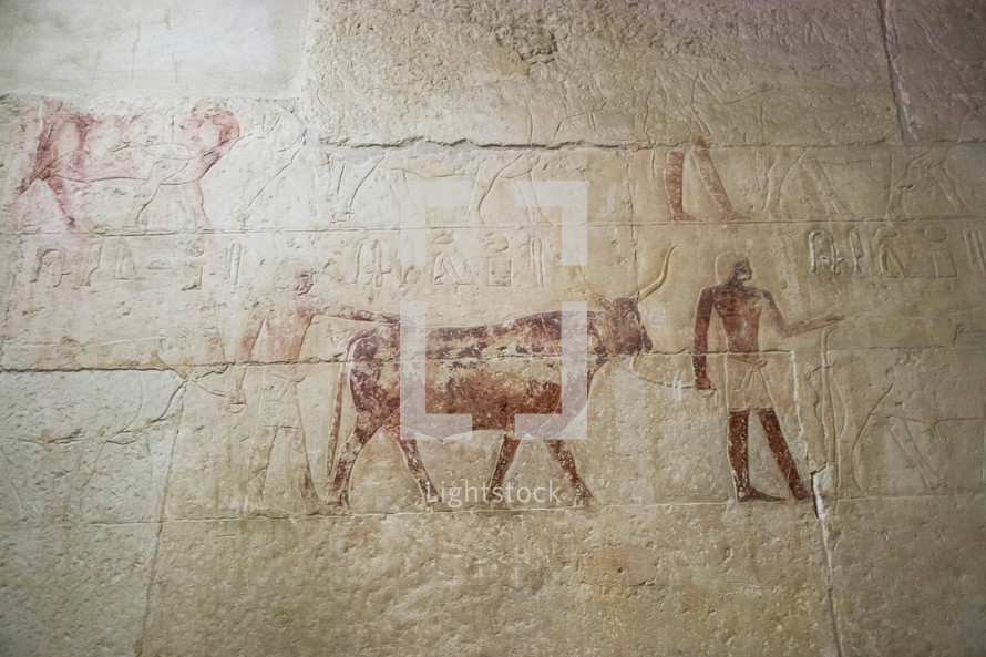 hieroglyphics in Egypt
