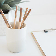 colored pencils in a cup and house plant on a desk