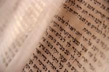 Hand-written Torah