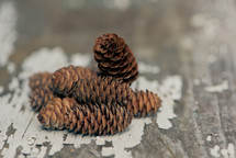 Pine cones on a board with peeling white paint.