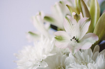 A bouquet of white flowers.