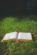 open Bible in the grass
