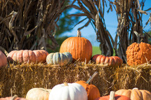 pumpkins on hay bales