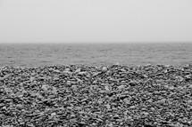 pebbles along a beach shore