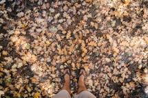 feet in flip flops standing in fall leaves