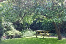picnic table on green grass