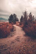 a gravel path