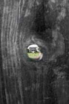 view of a house through a hole in a fence