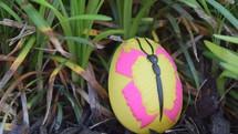 A butterfly Easter egg in green grass hidden for an Egg Hunt