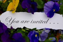 You are invited . . .