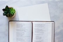 Note taking paper, a house plant, and Bible open to Proverbs on a marble counter top.
