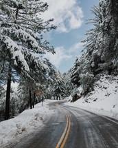 plowed winter road