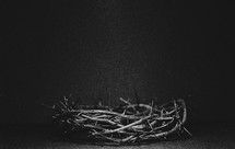 Crown of thorns on a black background