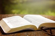 open Bible on concrete