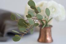 eucalyptus in a vase