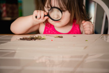 A little girl looking through a magnifying glass at leaves on a table.