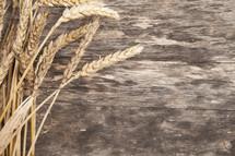 Stalks of wheat on wood.