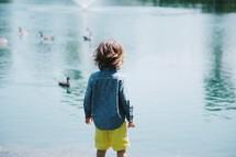 a toddler boy and ducks on a pond
