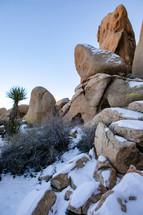 snow in a desert