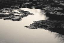 tide pool and rocks