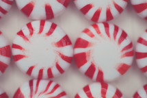 Close-up of peppermint candies.