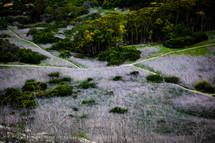 worn path on a mountainside