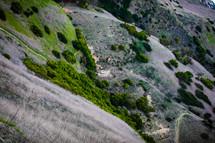 worn path on a hillside