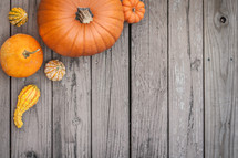 An selection of different Pumpkins bordering a background of aged wood