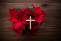 cross on a poinsettia