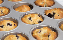 blueberry muffins in a tin