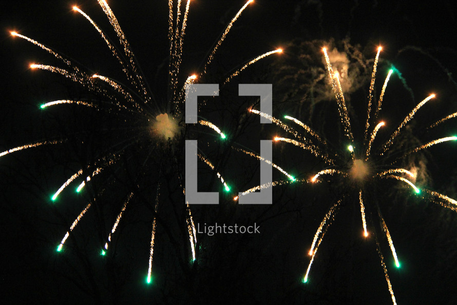 Fireworks bursting in the night sky