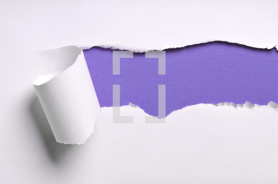 ripped paper purple