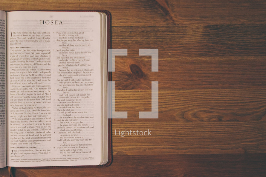 Bible on a wooden table open to the book of Hosea.
