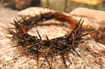 Bloody crown of thorns on a stone wall