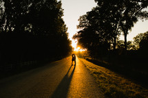 silhouette of a couple standing together in the middle of a road at sunset