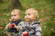 toddler sitting in grass biting apples