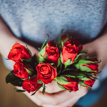 giving red roses