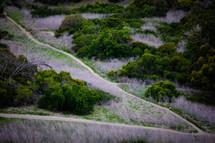 worn path up a mountainside